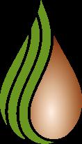 imge-logo